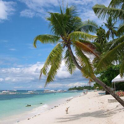 Alona Beach - Panglao Island - Philippines