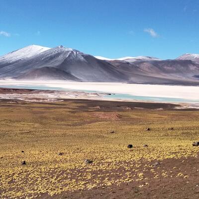 Salar de Atacama (Antofagasta) Chile