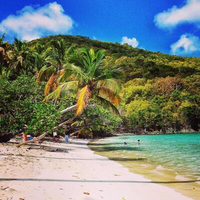 Maho Bay Beach (Cruz Bay) US Virgin Islands