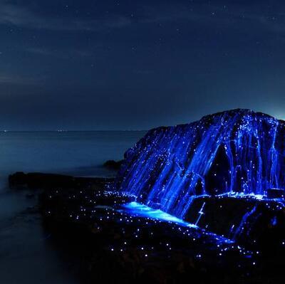Bioluminescent Rocks, Okayama, Japan