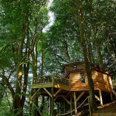 Stay overnight in a luxury tree-house