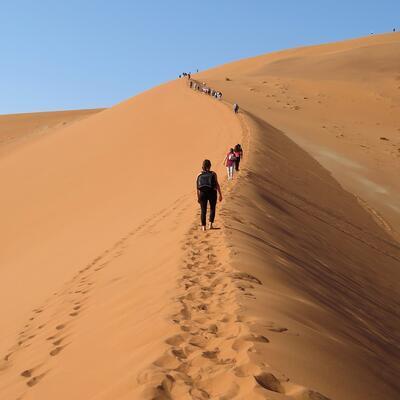 Hike up a sand dune