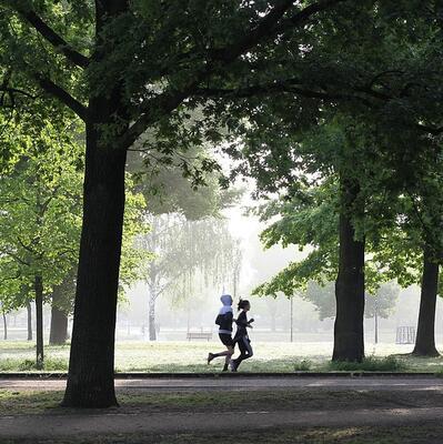 Run a 5Km Park Run