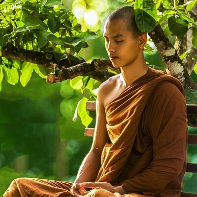 Become an avid meditator