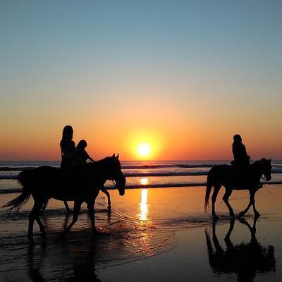 Ride a horse along the beach