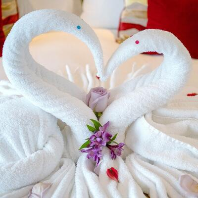 Make a towel swan
